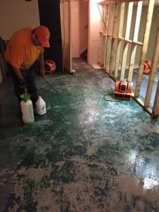 Floor Restoration Job in Birmingham